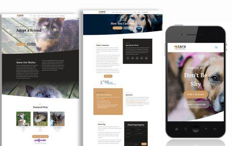 sara society website